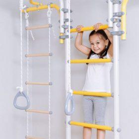 gymnastic_ladder_transformer_prowance
