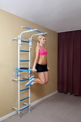 wallbars_fitness_double_mounting_system_dip_bars