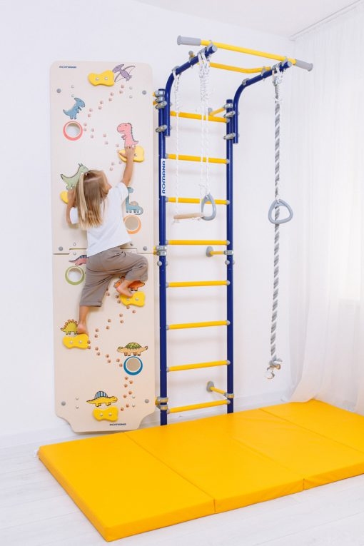 climbing_wall_dino_with_comet_next_1